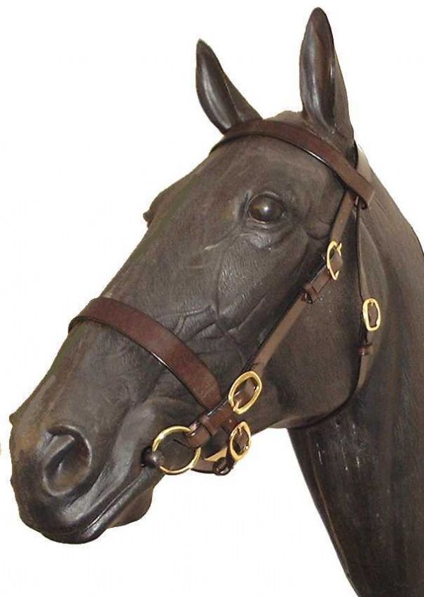 Wyvern Heavyweight In-Hand Bridle